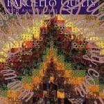 Colorwash Bargello